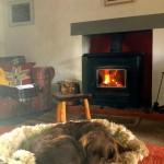 Multi-fuel boiler stove